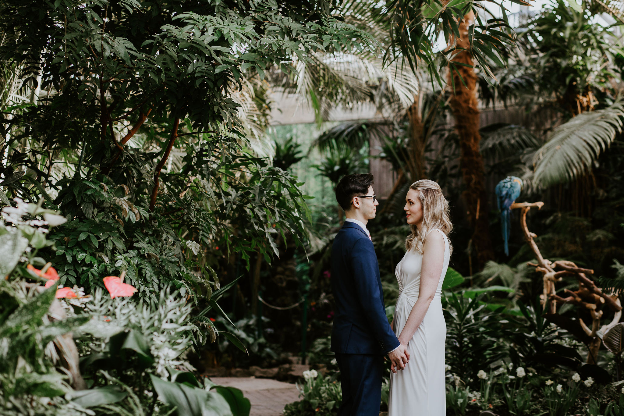 Vancouver elopement at Bloedel Conservatory