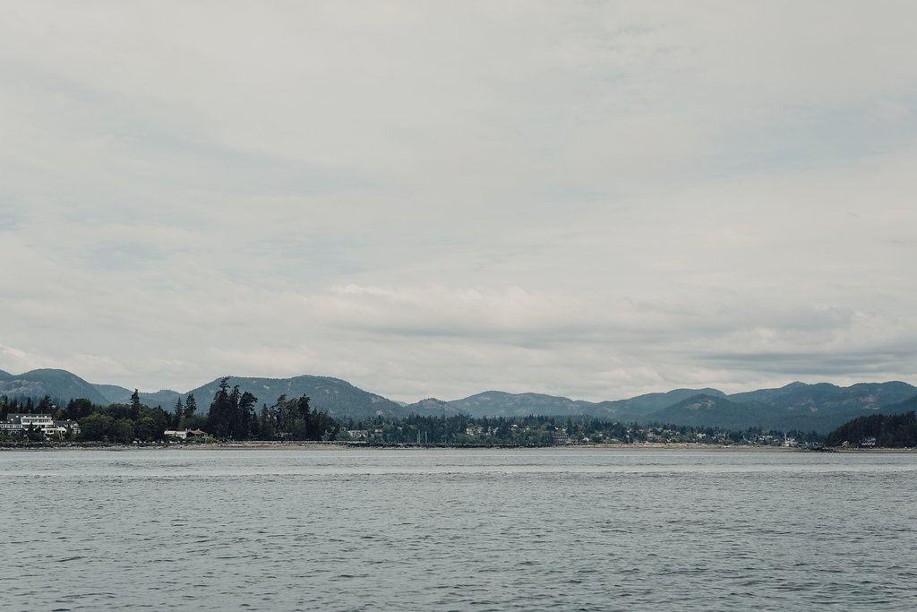 View from Vancouver Island elopement