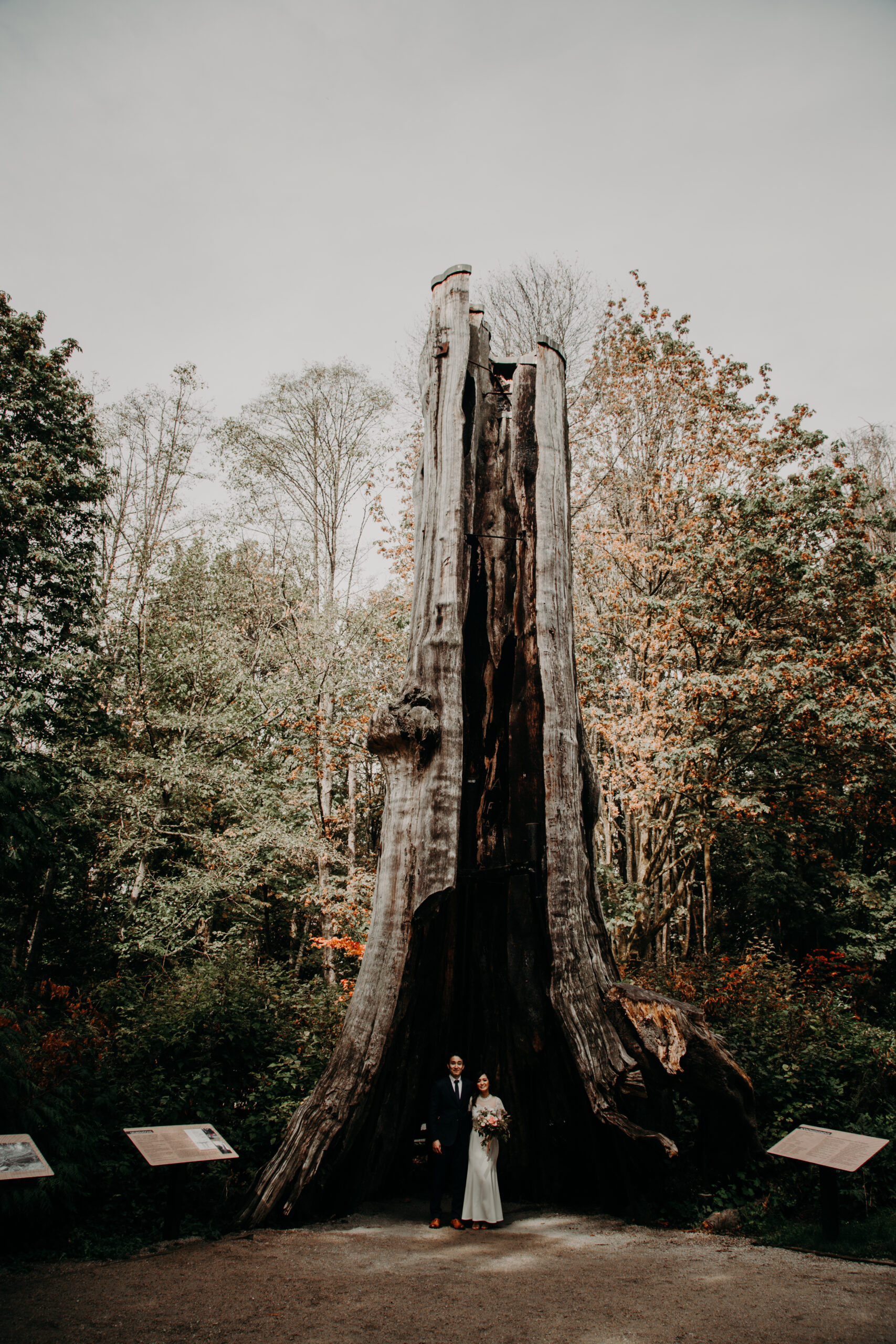 Vancouver elopement at the Hollow Tree in Stanley Park